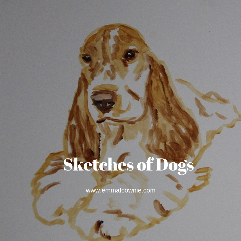Paintings of spaniels